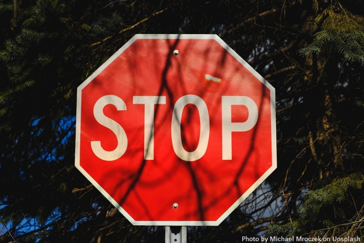 Stop sign in front of a forest in summer
