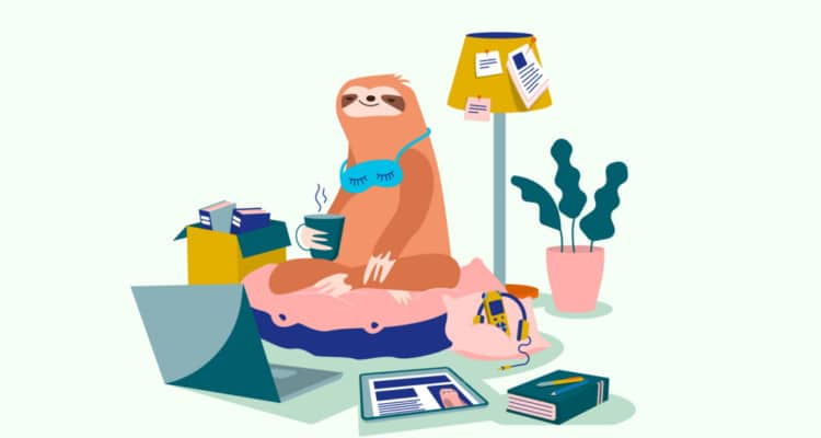 Sloth on a bean bag with a laptop.